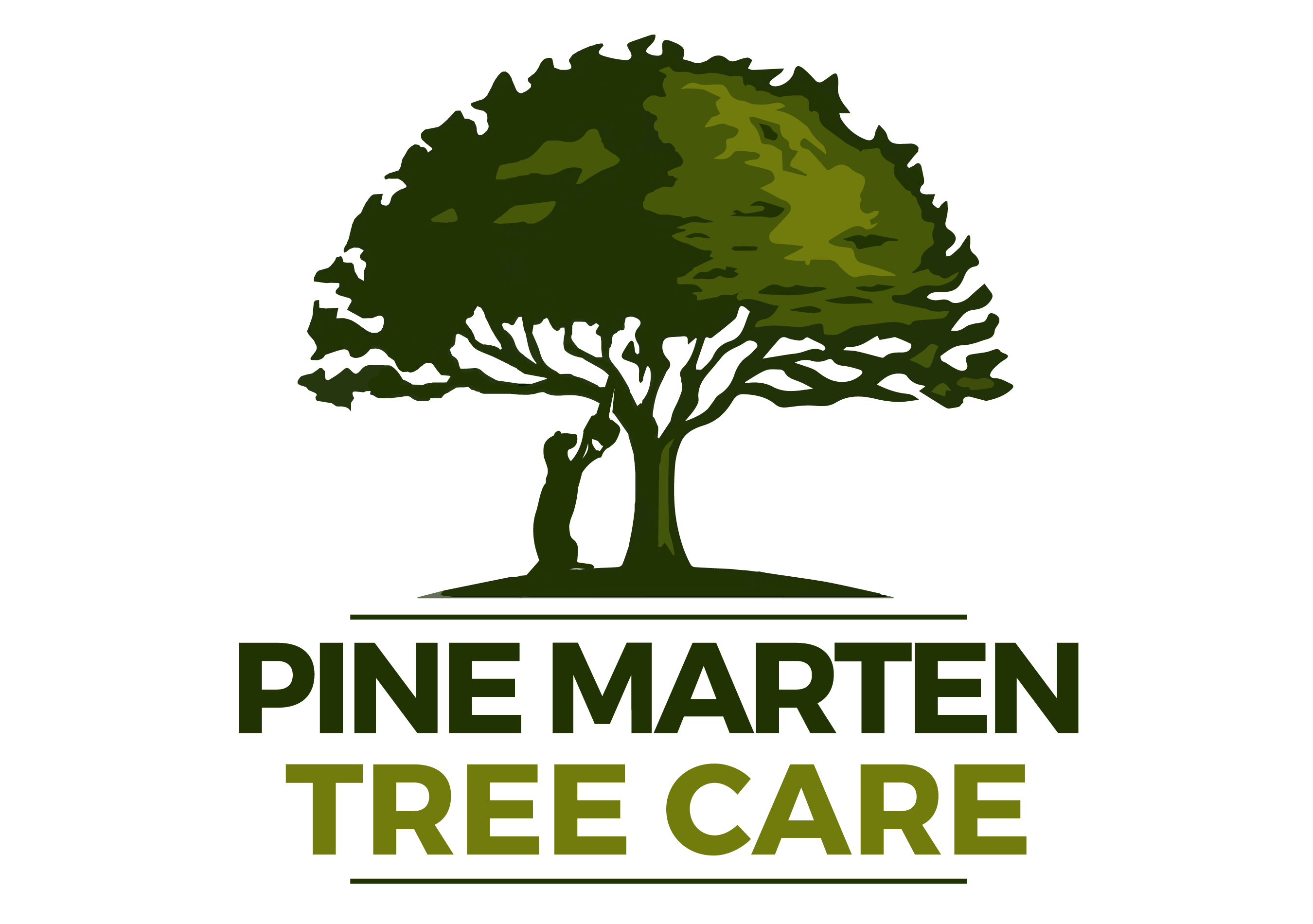 Pine Marten Tree Care Spokane, Wa | 509-904-6345