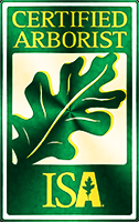 isa certified arborist Pine Marten Tree Care